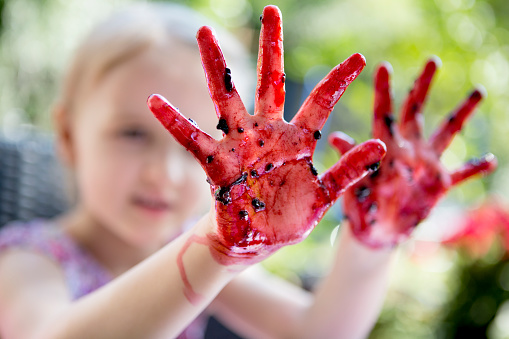 Child holding up hands covered in blackberries.