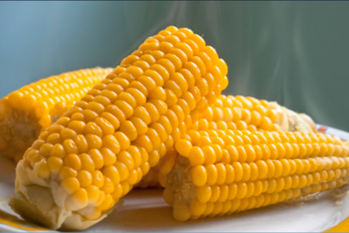 Some corn on the cob laying on a white plate with some steam coming up.